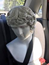 Antinous, our back-seat driver.